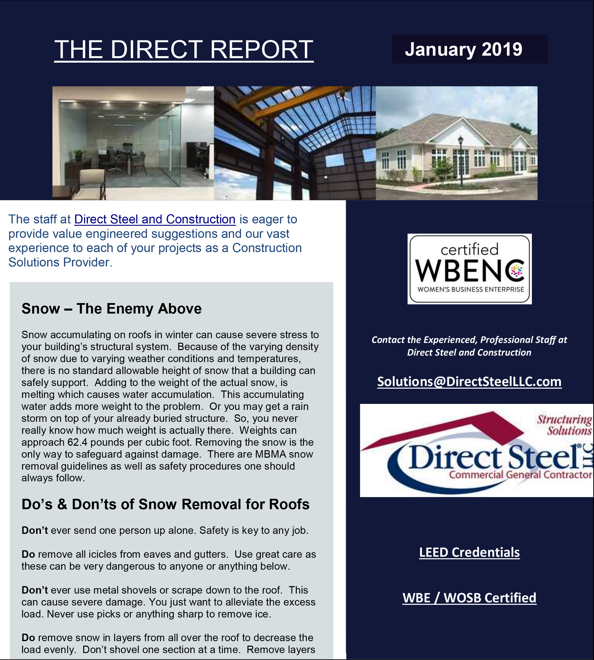 Direct Report January 2019 Page 1